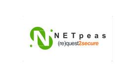 نيتبيس NETpeas